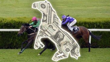horseracing-money